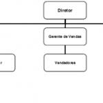 Estruturas Organizacionais para Gerenciamento de Projetos